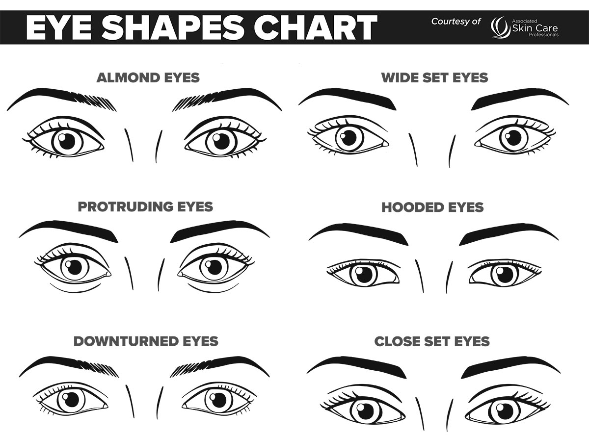 New makeup face charts new makeup face chartsjust for you maxwellsz